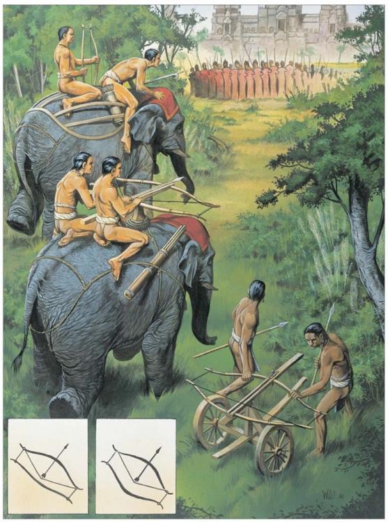 Elephant.thumb.jpg.45e2790a1455d3c733aac
