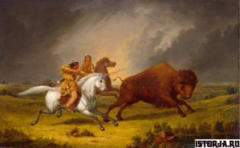 Assiniboine_hunting_buffalo_by_Paul_Kane
